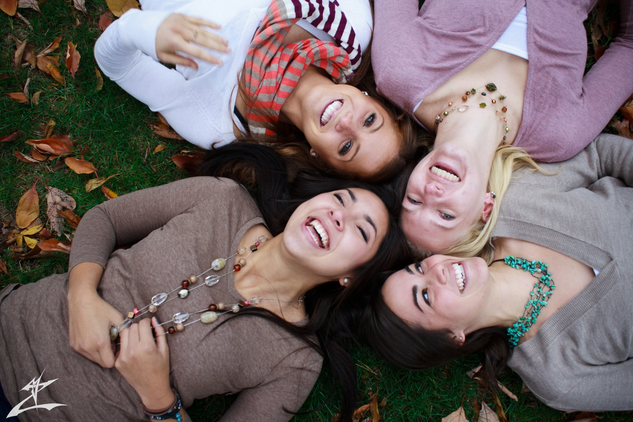 Four girls are laughing together